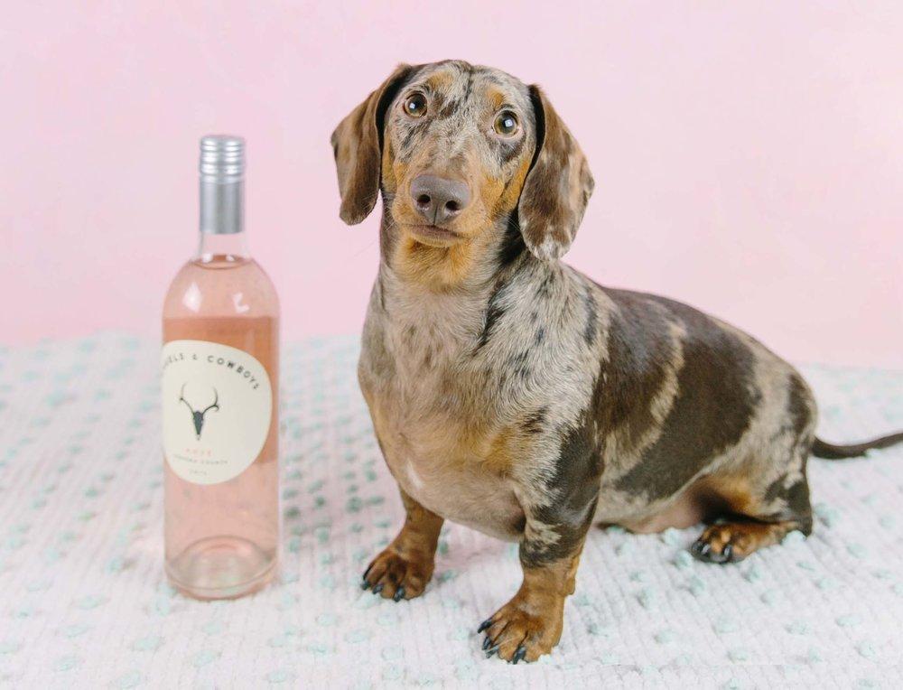 Is it rosé o'clock yet?