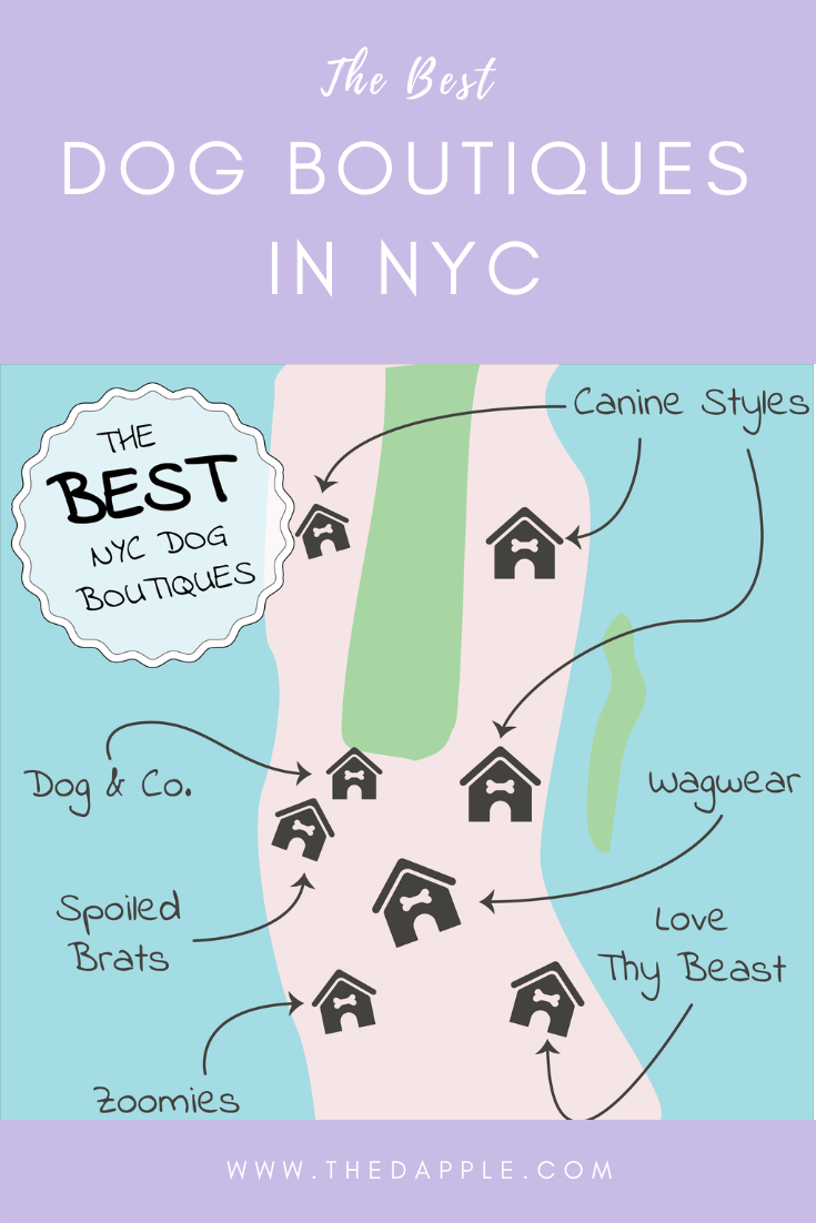 The Best Dog Boutiques in NYC - Where to Shop for Your Dog in New York