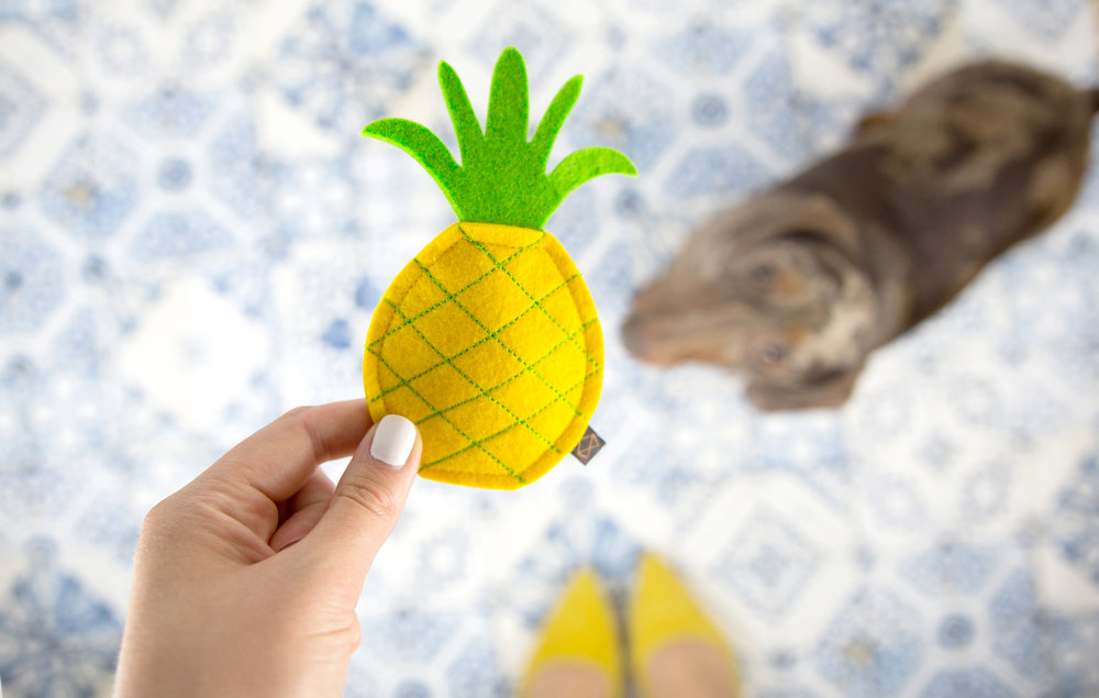 MODERNBEAST's  Puppy Pineapple Toy