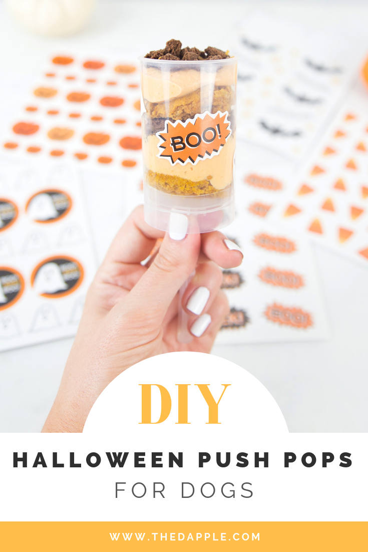 DIY Halloween Push Pops Dog Treats