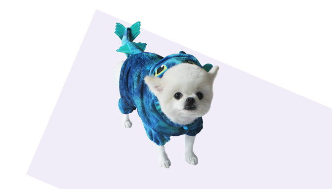 Dragon Dog Halloween Costume from Amazon