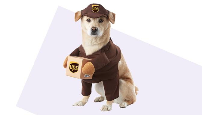 UPS Dog Halloween Costume from Amazon