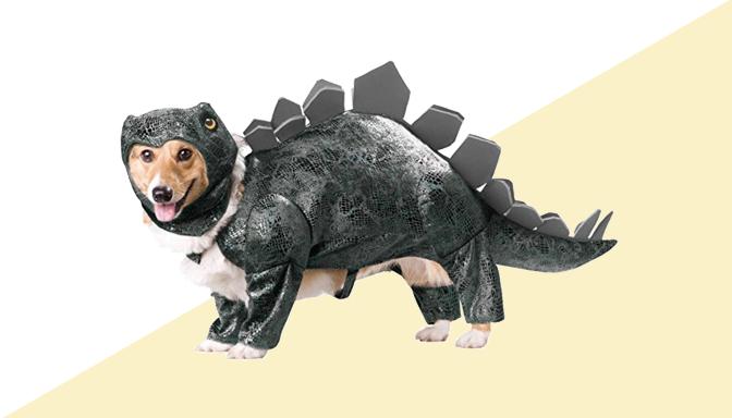 Stegosaurous Dog Halloween Costume from Amazon