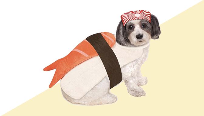 Sushi Dog Halloween Costume from Amazon