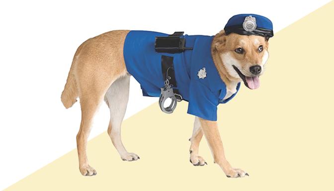 Policeman Dog Halloween Costume