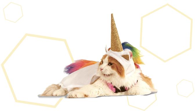 Light-Up Unicorn Dog Halloween Costume from Amazon