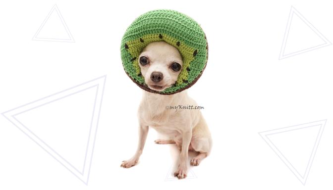 Kiwi Dog Costume from MyKnitt Handmade Dog Clothes