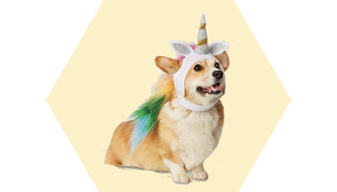 Unicorn Dog Halloween Costume from Target