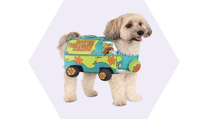 Mystery Machine Halloween Dog Costume from Amazon