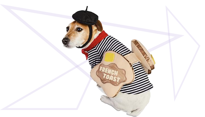 French Toast Dog Halloween Costume from Petco