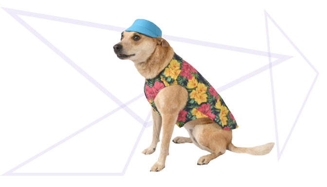 Hawaiian Tourist Dog Halloween Costume from Target