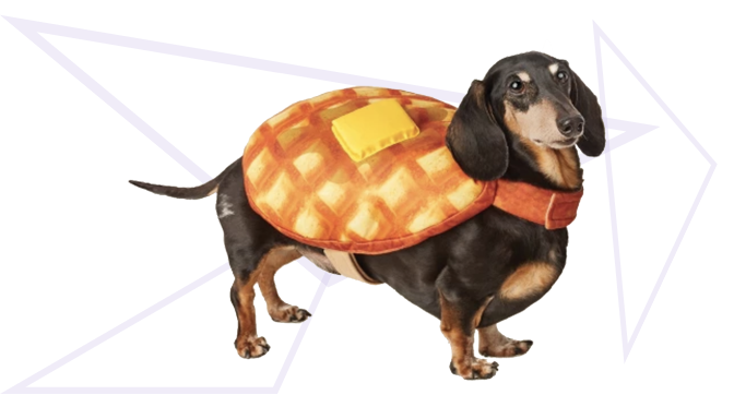 Waffle Dog Costume from Target