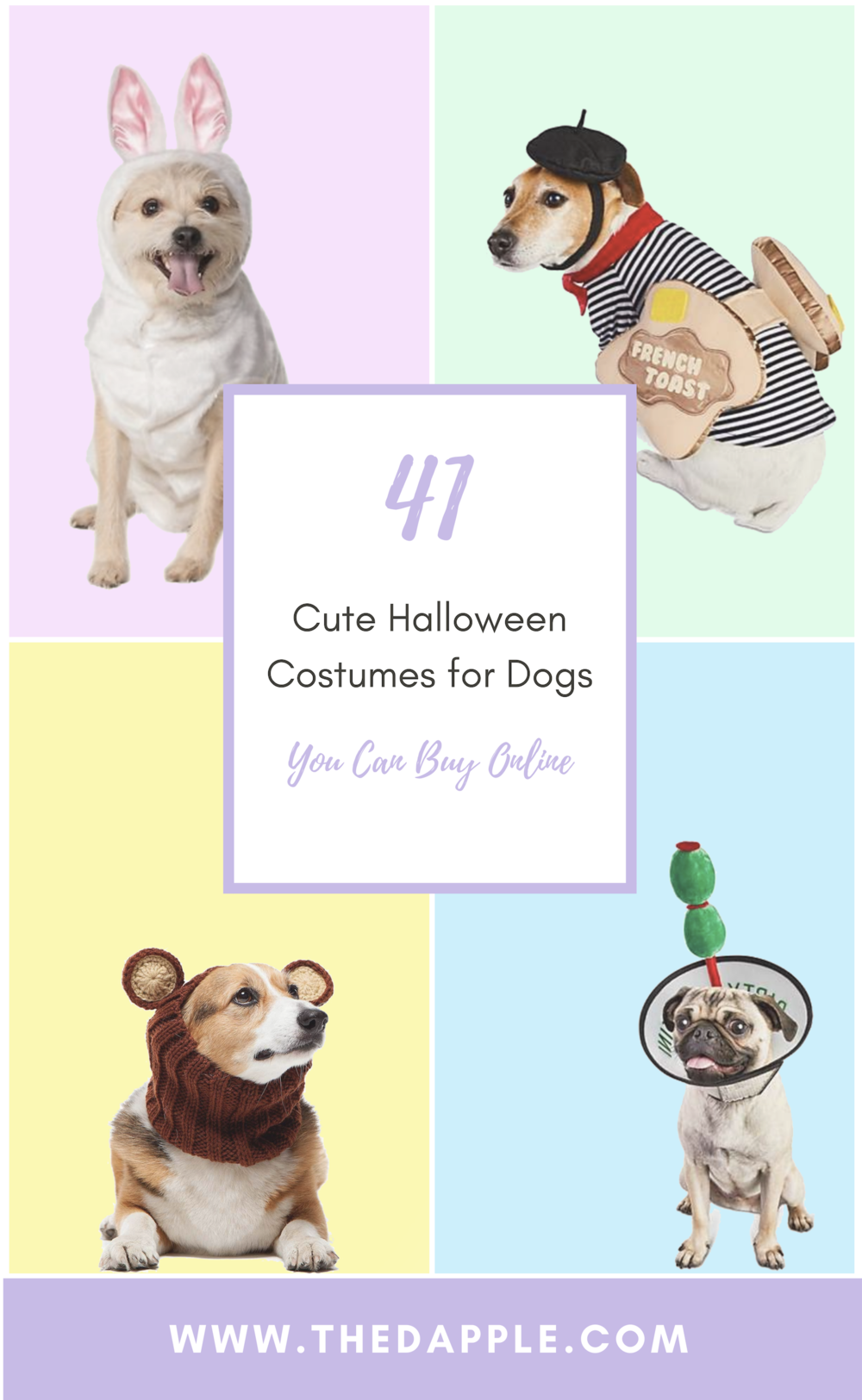 Best Cute and Funny Dog Halloween Costumes for Halloween 2018