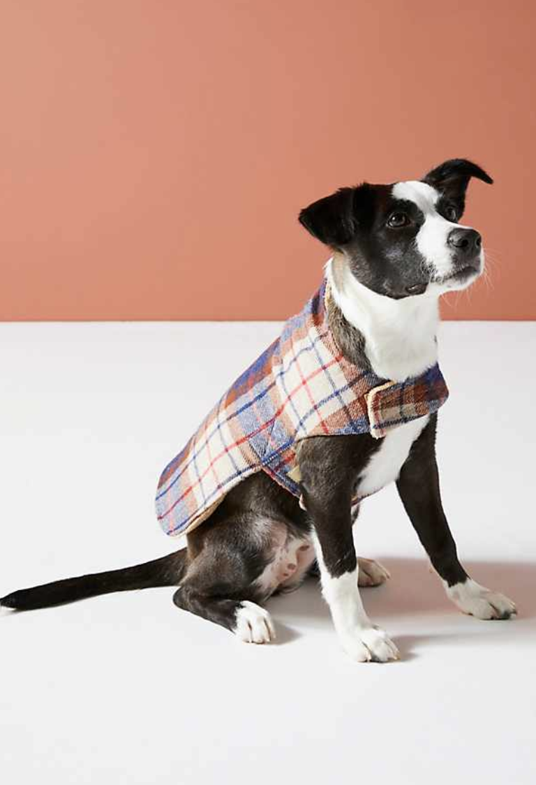Porter Plaid Dog Coat - The Best New Dog Items at Anthropologie