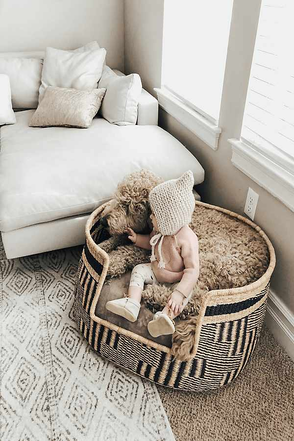 Design Dua Bear Dog Bed - - The Best New Dog Items at Anthropologie