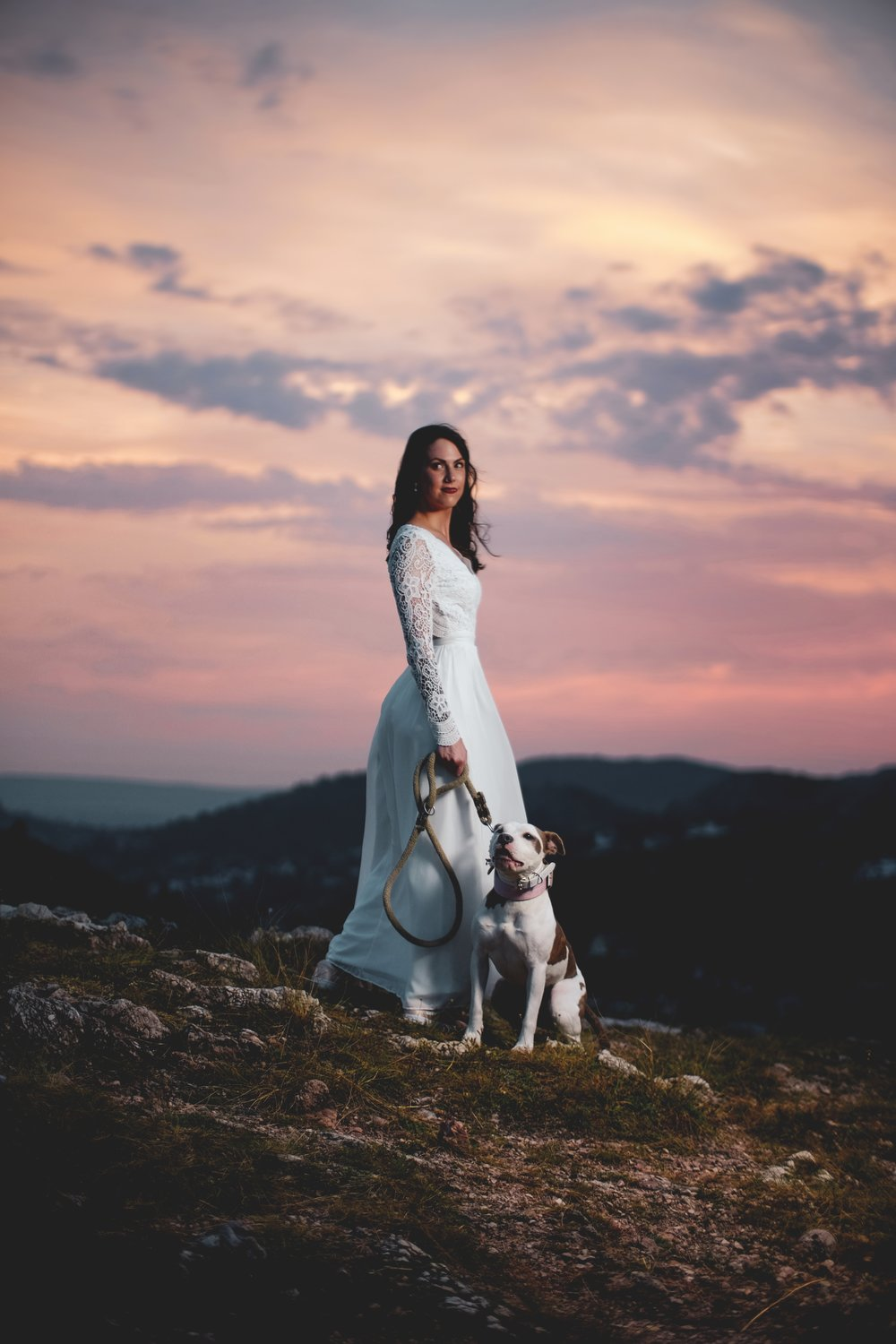 NYT Dog Wedding Article on The Dapple: Dog Lifestyle Blog