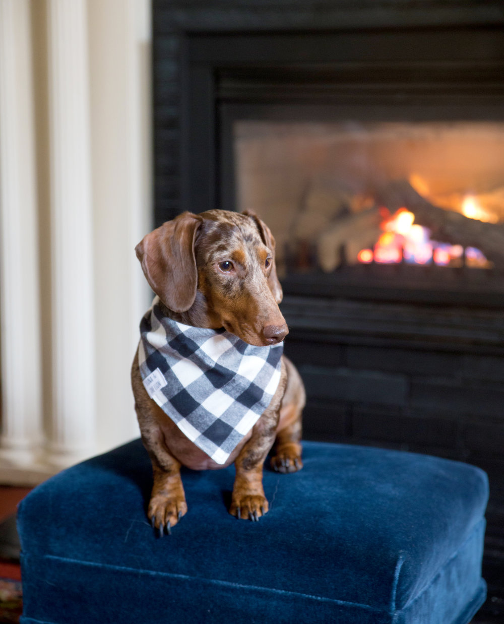 Dave loved our in-room fireplace at The Red Lion Inn