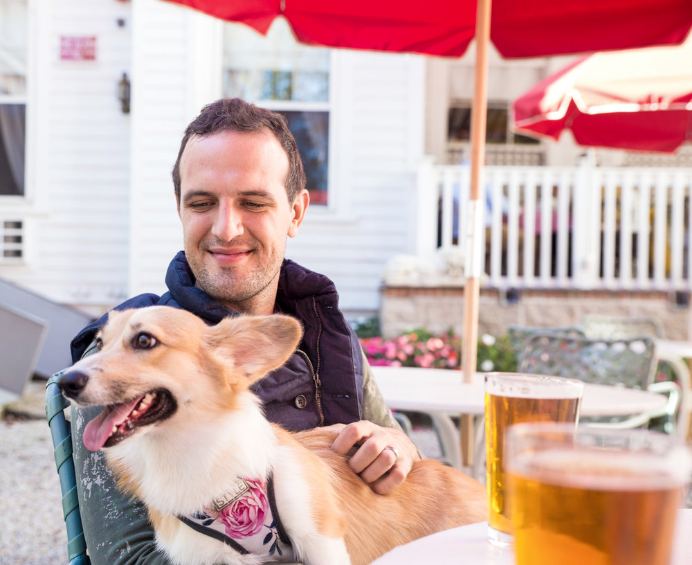 Dog-friendly drinking at The Red Lion