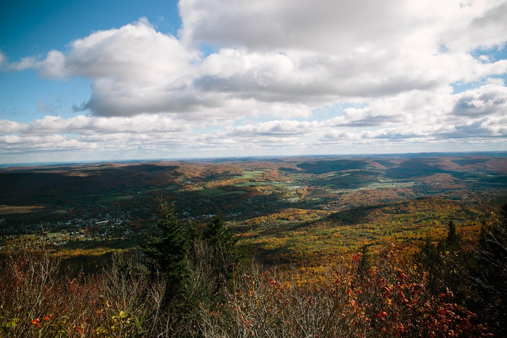 The view from Mount Greylock