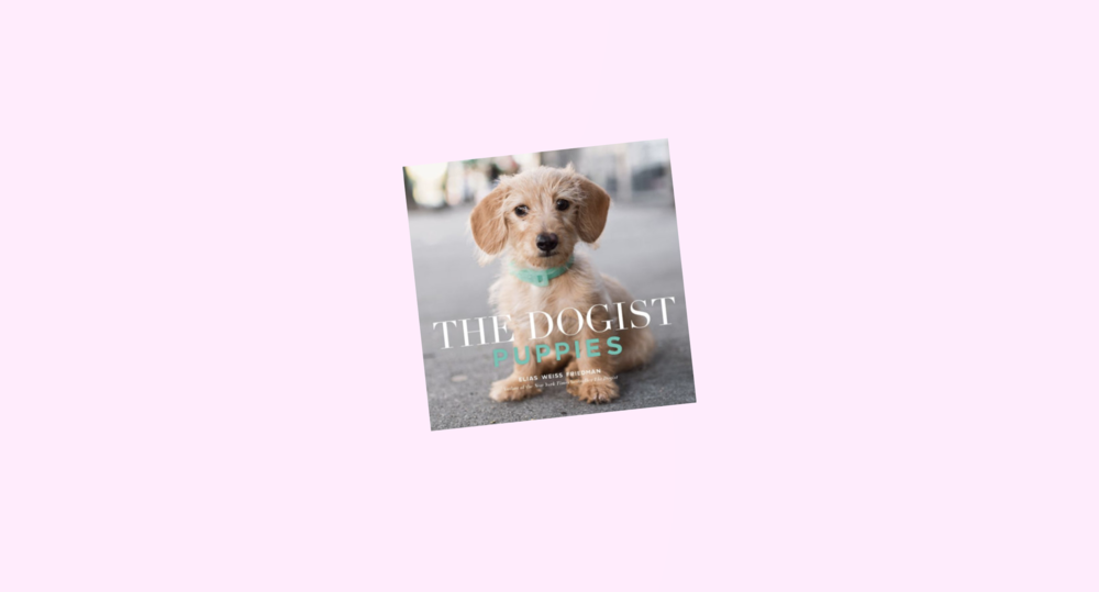 dogist.png