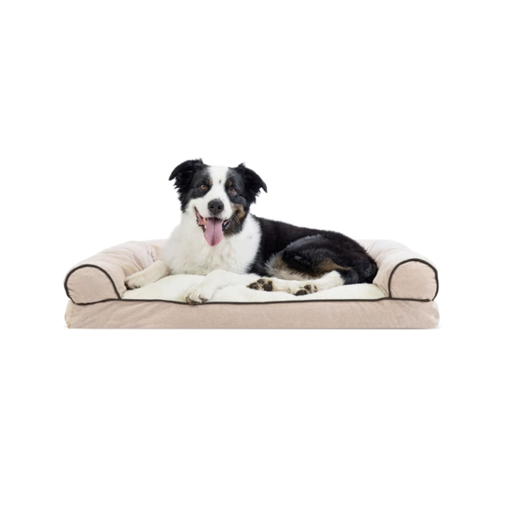 Overstock Black Friday Deals on The Dapple's List of Best Black Friday Deals for Dog Lovers and Dog Owners