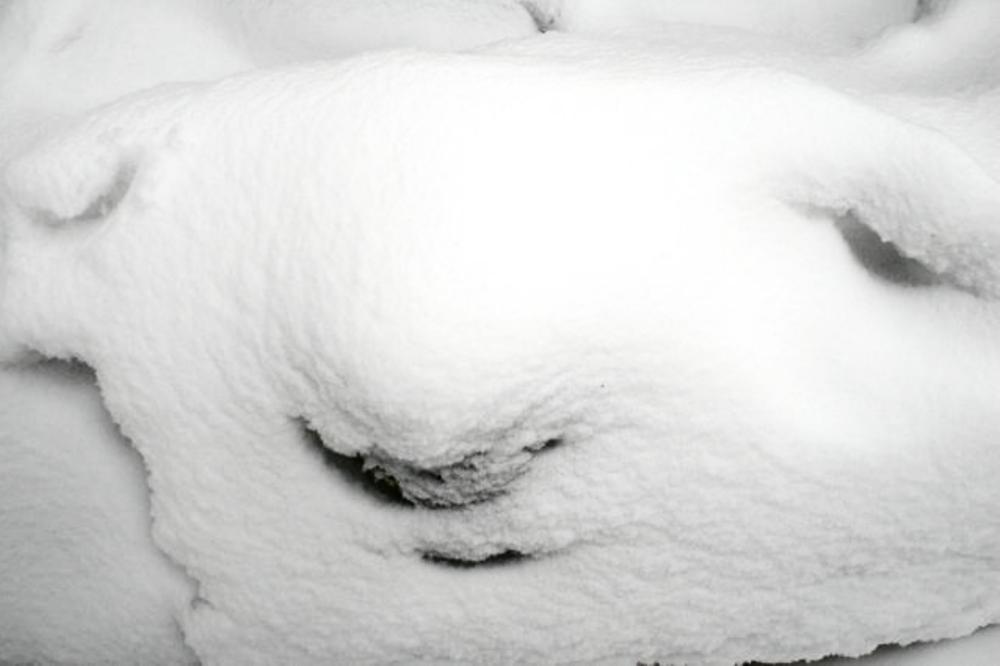 SnowFace1.png