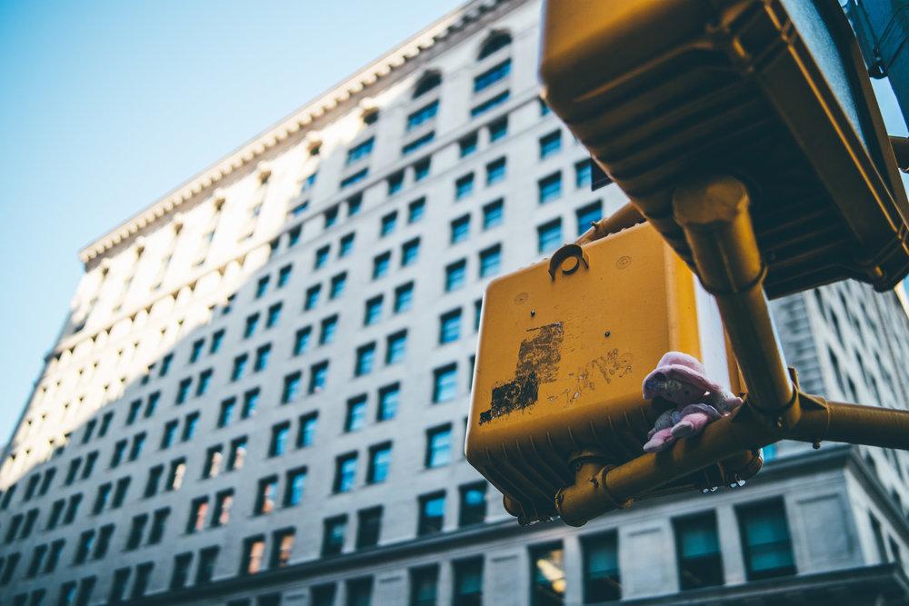 newyork-06718.jpg