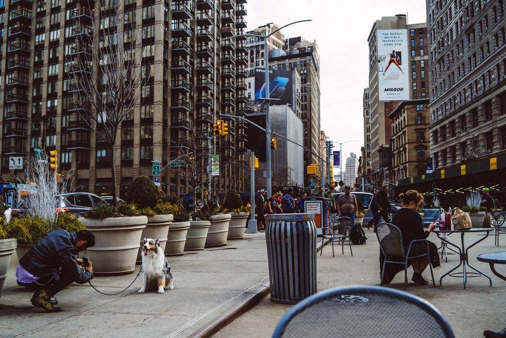 newyork-sony-102734.jpg