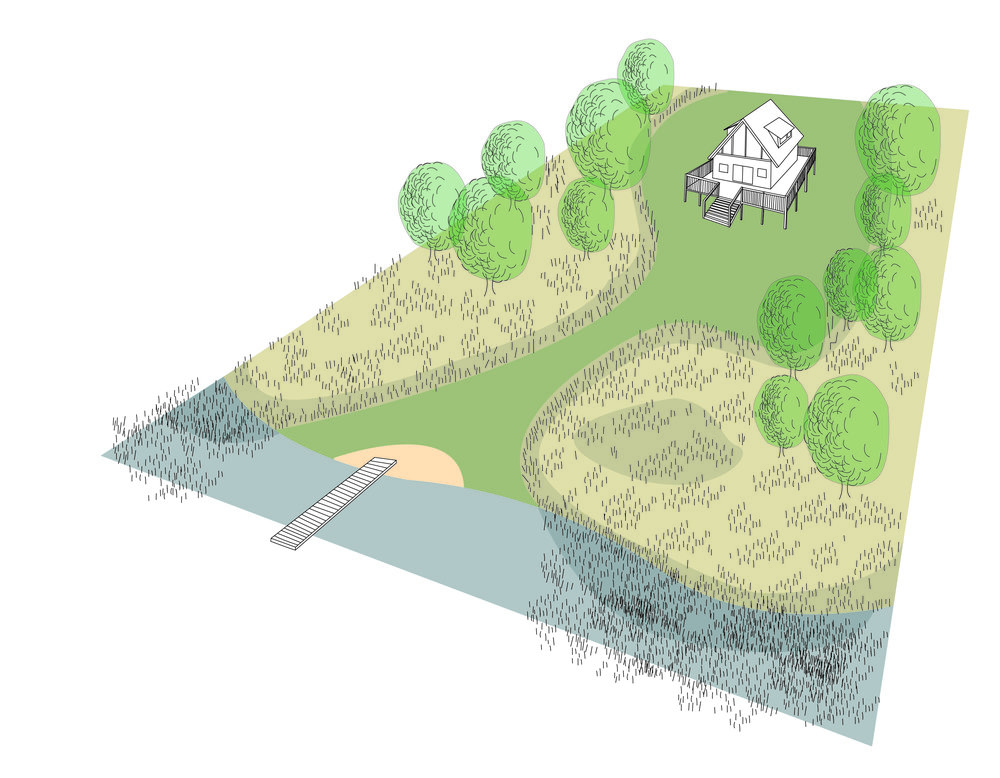 These buffer zones reduce mowing and lawn maintenance, filter contaminants, provide habitat, and stabilize the soil both upland and along the water's edge. Illustration by Steve Heymans.