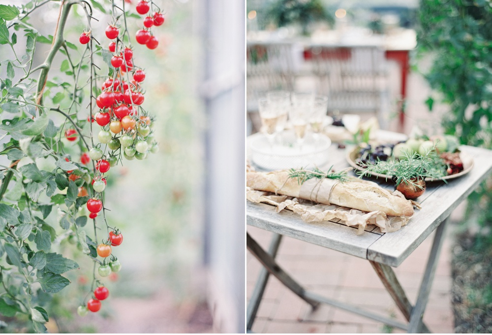 Greenhouse_wedding_inspiration©MadalinaSheldon_0003.jpg