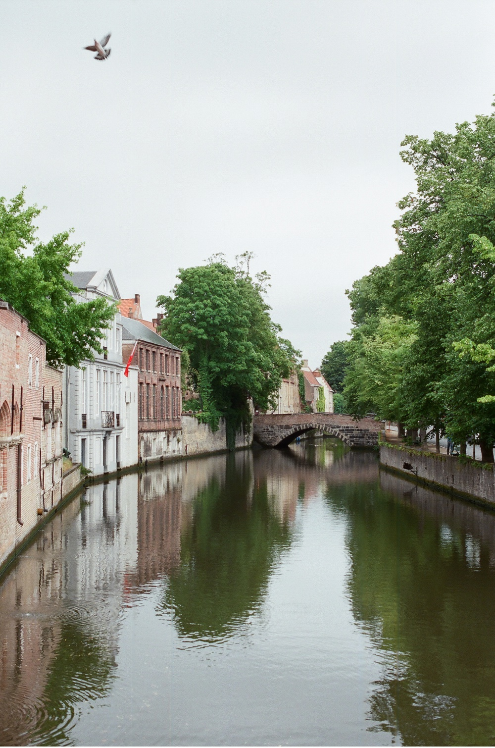 Brugge_Belgium_WeddingPhotographer©MadalinaSheldon_0030.jpg