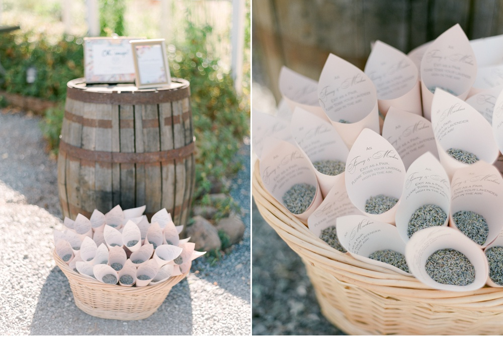 Provence_Destination_Wedding_Photographer©MadalinaSheldon_0002.jpg