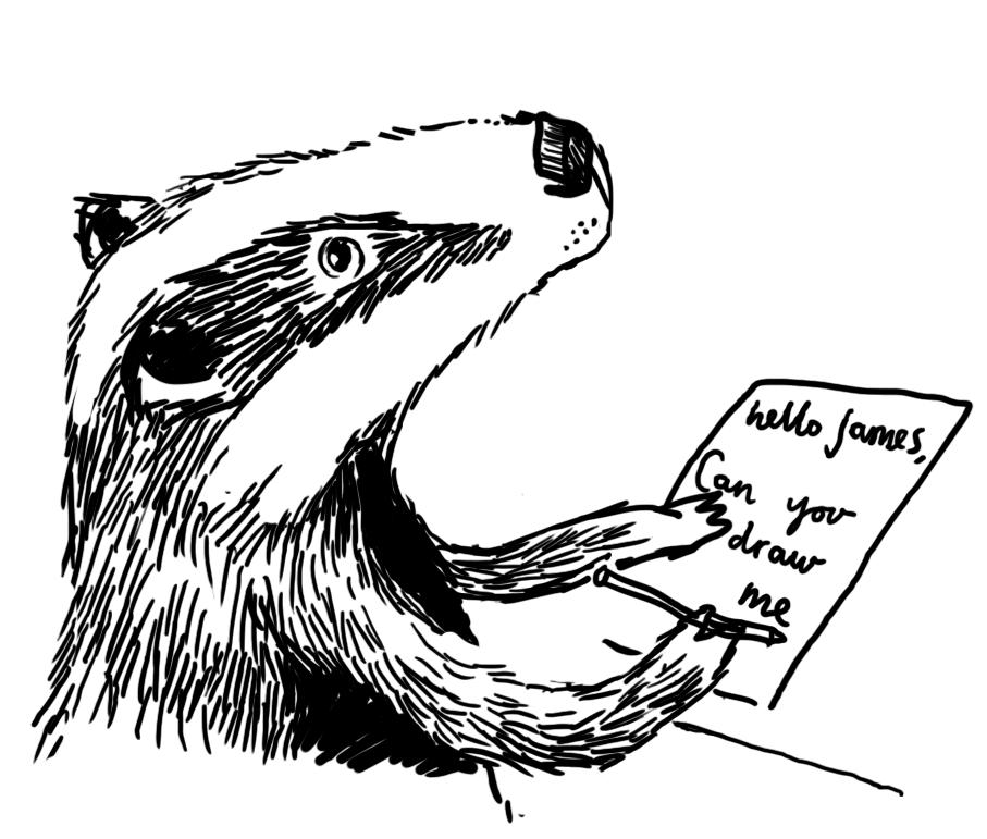 badger website.jpg