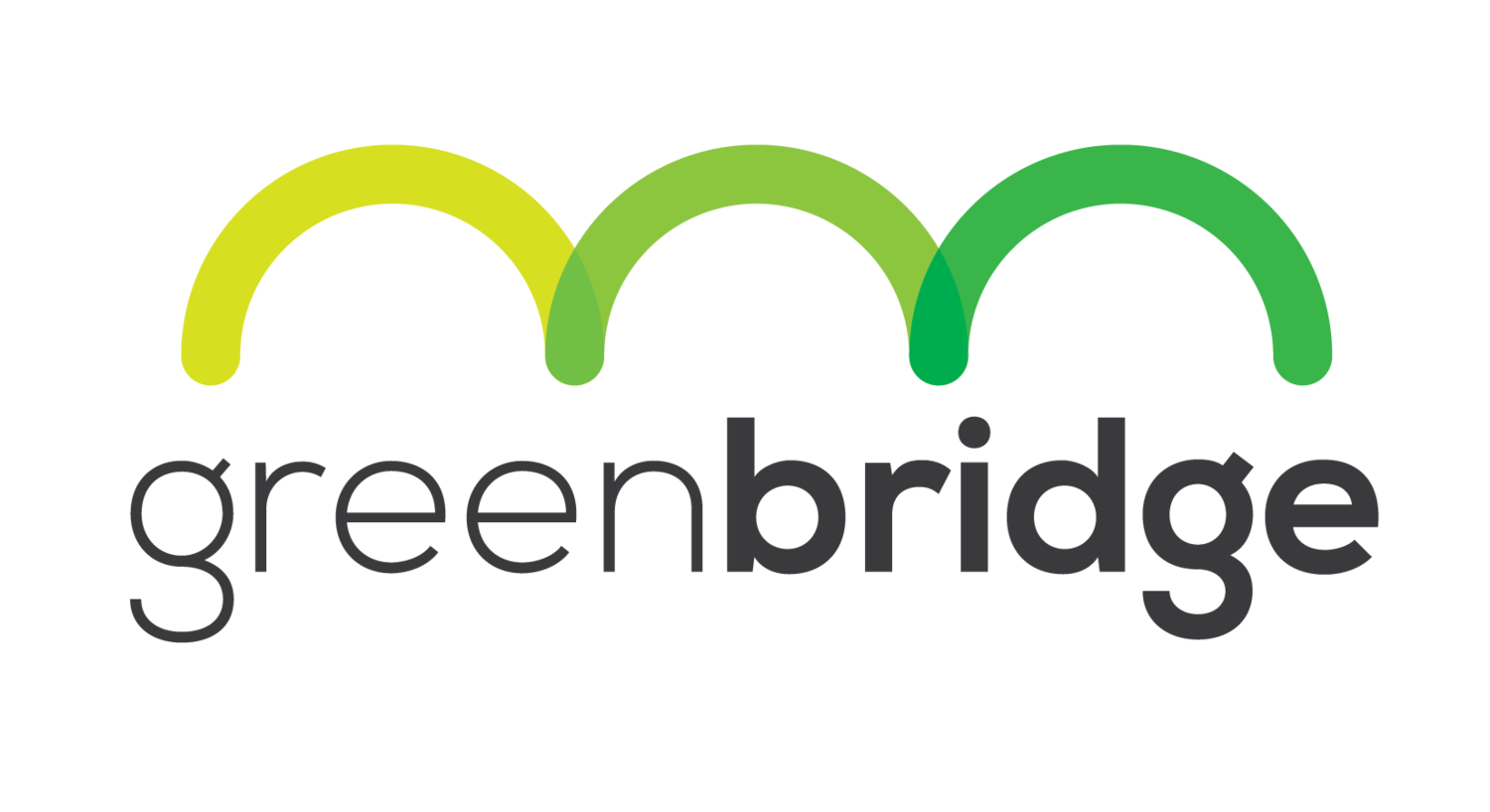 green bridge consulting llc