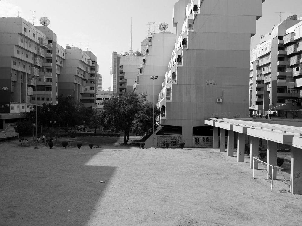 Tarek Al Ghoussein_Al Sawaber 0024_2015-2017_Digital print_30 x 40cm.jpg