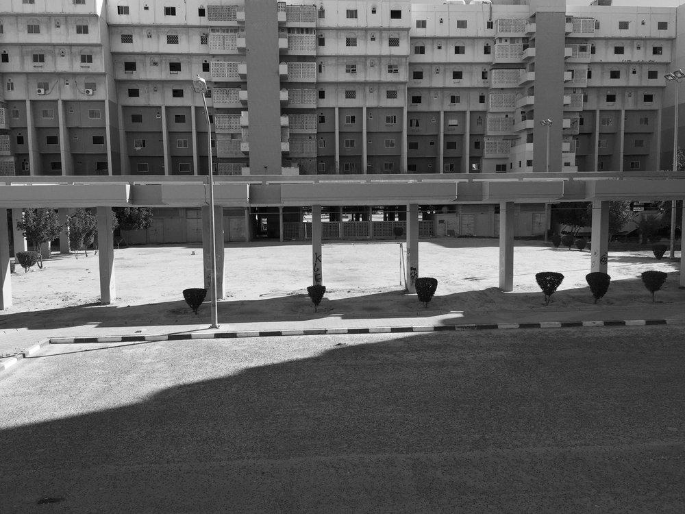 Tarek Al Ghoussein_Al Sawaber 3090_2015-2017_Digital print_30 x 40cm.jpg