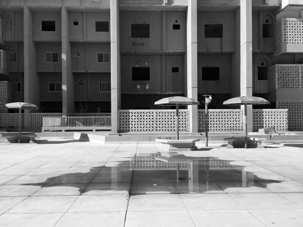 Tarek Al Ghoussein_Al Sawaber 3268_2015-2017_Digital print_30 x 40cm.jpg