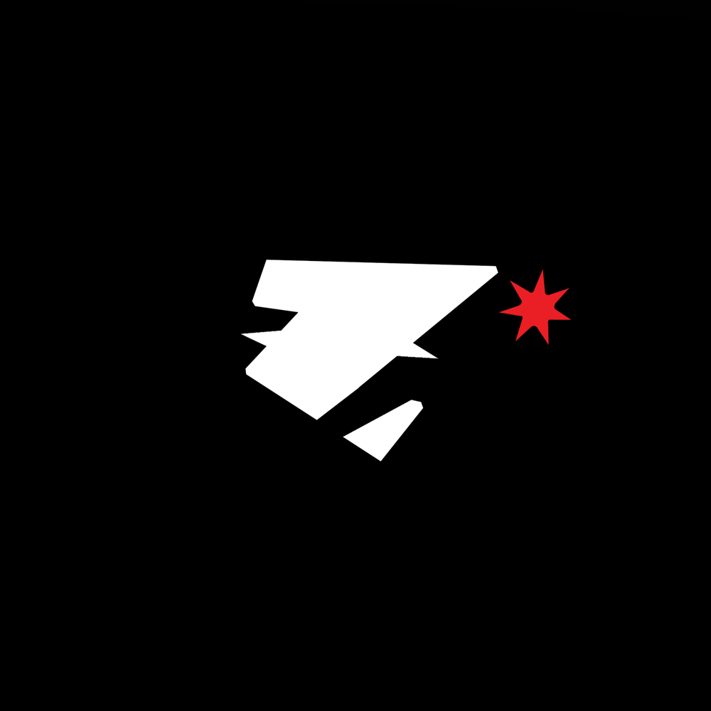zimmLogo-Recovered2.png