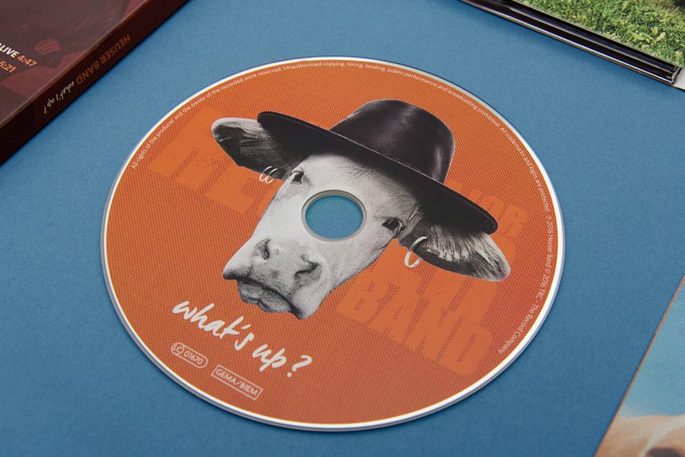 Kuh mit Hut. Gestaltung der CD von den kölner Grafikdesignern sons of ipanema für das Album What´s up von der Klaus Major Heuser Band.