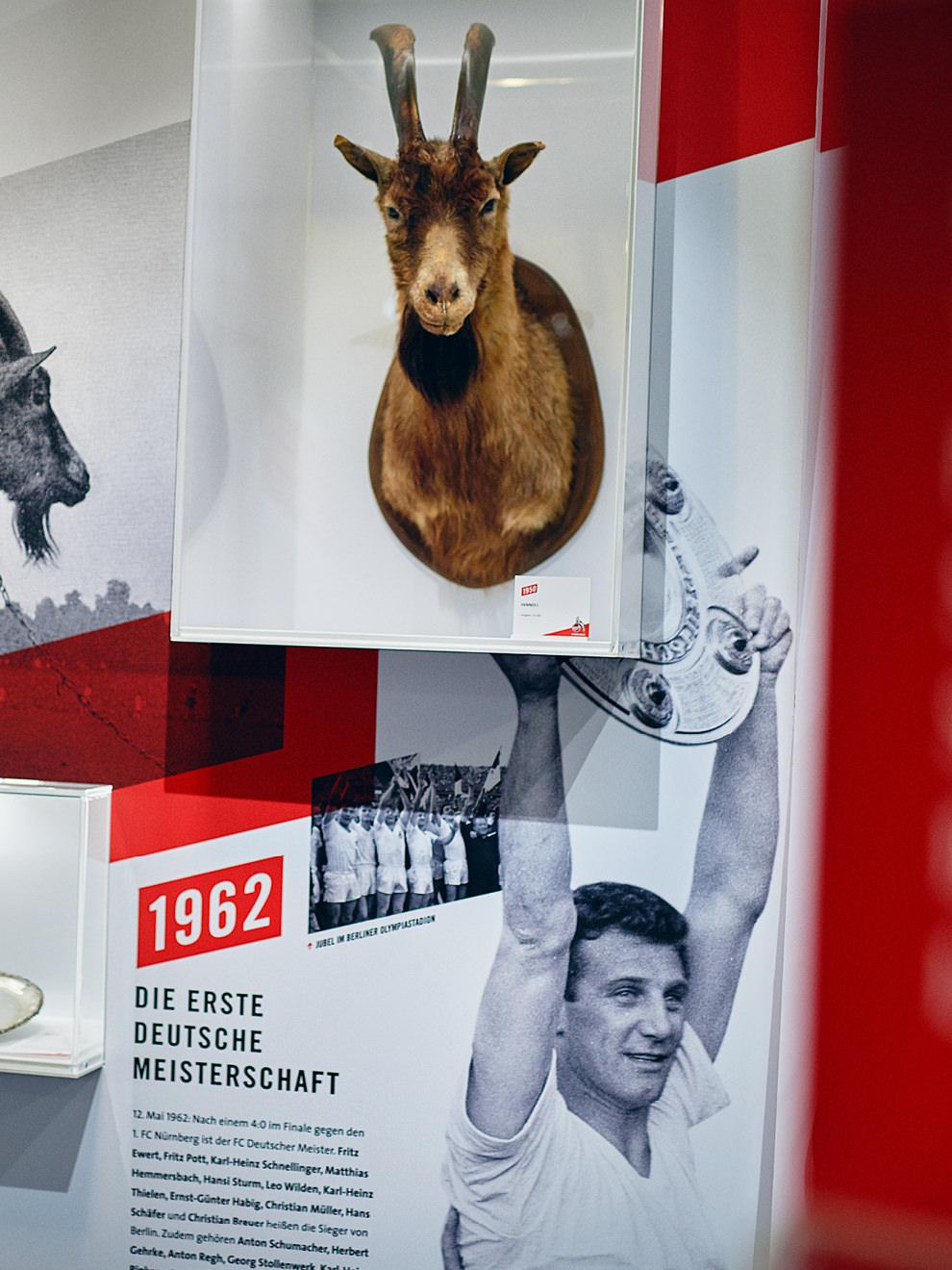 """Hennes I. in der Ausstellung """"70 Jahre FC"""" / Ausstellungsdesign: sons of ipanema (Designagentur aus Köln)"""