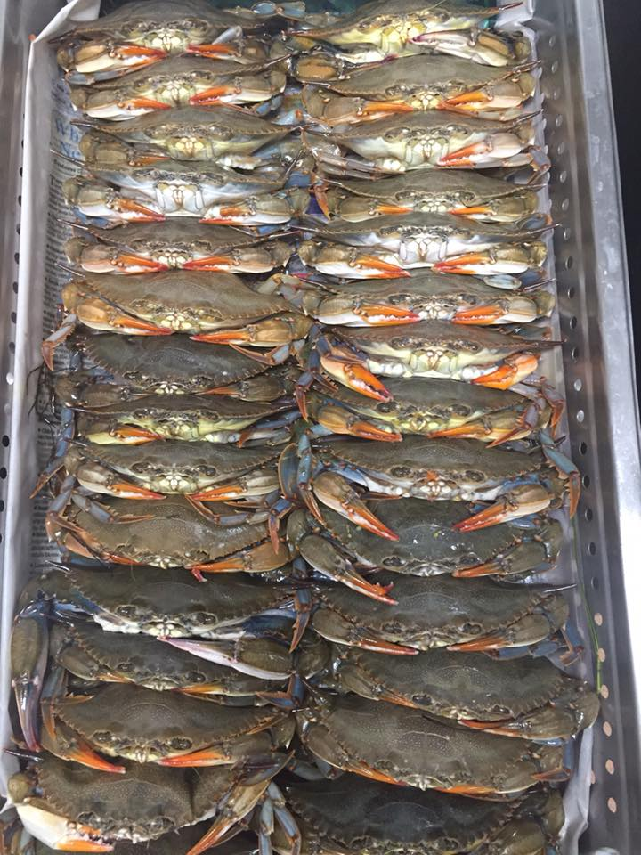 Braun Seafood