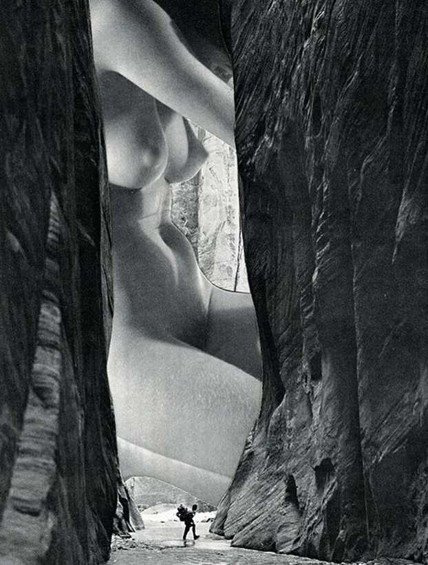 The Encounter - 2017 - Collage sur papier - 40 x 50 cm