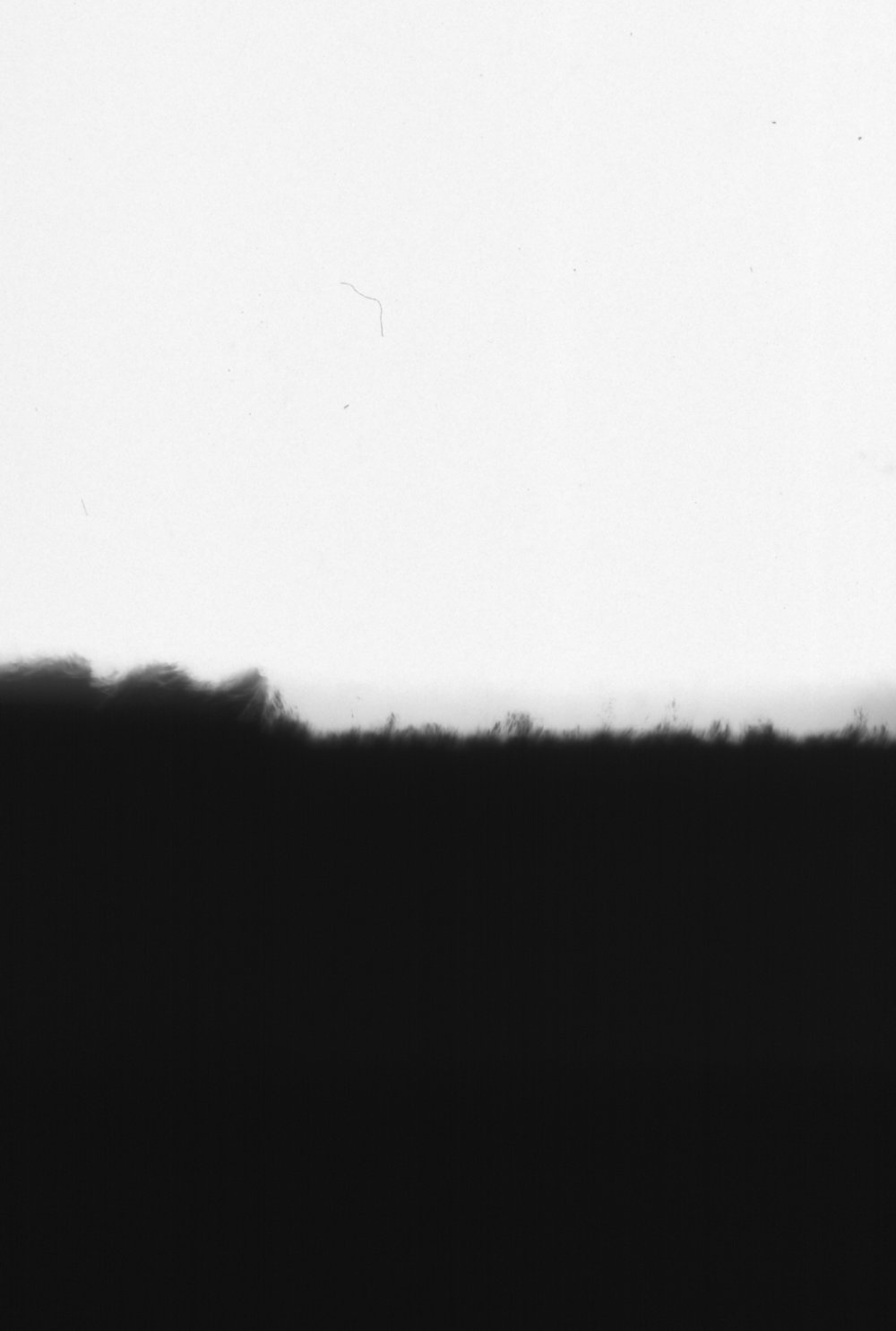 UT.L, framed, 550 x 364 mm, 2018