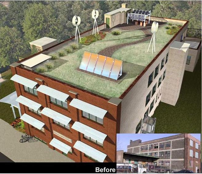 green-roof (1).jpg