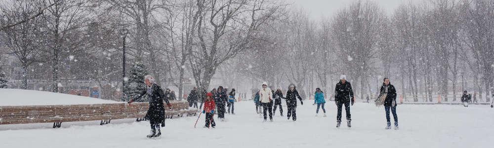 Explore our Winter Tours -