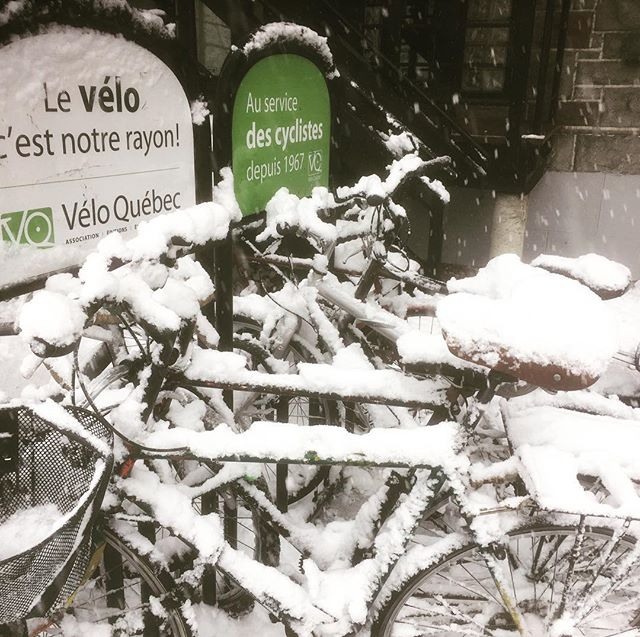 Some of the brave that rode to work today @veloquebec #snowbike #winterbike #montreal #montreallife