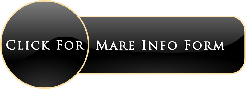 Mare Info Form.png