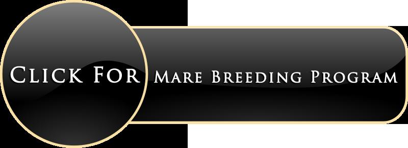Mare Breeding Program.png