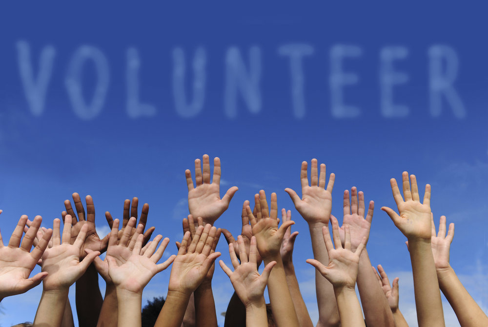 Creating opportunities for parents and children to volunteer together -