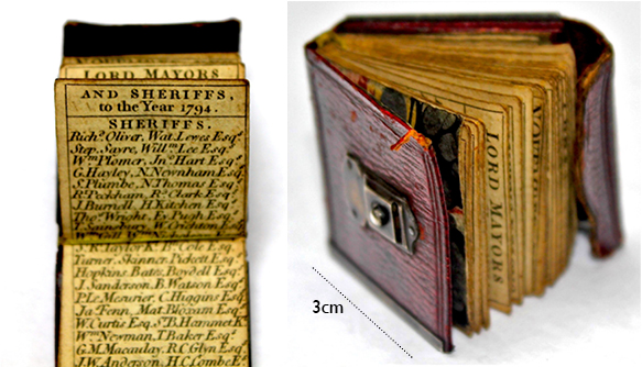 The tiny almanac measuring just 3cm square.
